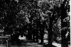 Zamek-Zinkovy-historie-ve-fotografii-019