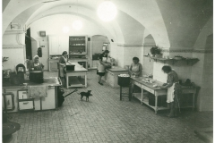 Zamek-Zinkovy-historie-ve-fotografii-064